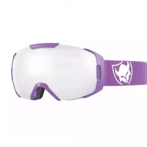 TSG Goggle One viking 2018